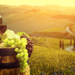 Love Wine? Here Are the Top 10 Destinations for Wine Around the World