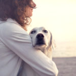 Training a New Dog Owner: 5 Pawesome Tips to Become the Best Dog Parent